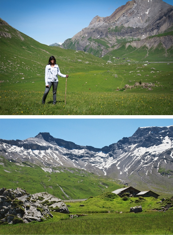 Alps4sm