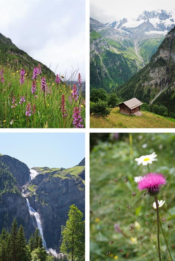 Alps5sm